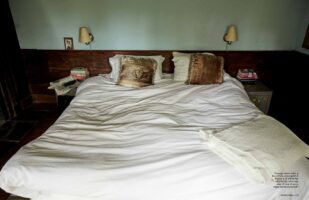 BR1bed